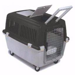 Transporte Cães IATA- Gulliver N4
