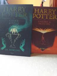 Livros: Harry Potter e Direito Civil.