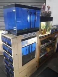 2 balcões e estrutura de aquários petshop ou agropecuária