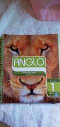 Material Anglo em Perfeito Estado - 1° ano Ensino Médio