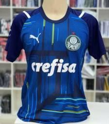 Camisa Goleiro Palmeiras 1