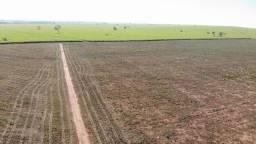 fazenda em mirandopolis 265 alqueires 21.200.000