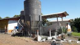 Título do anúncio: Granja de suínos e gado de leite em Xavantina/SC