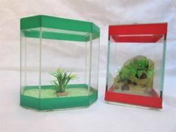 Aquarios pequenos para peixe Beta