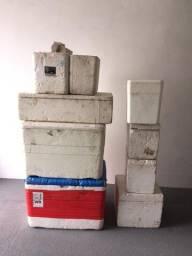 Vendo 8 caixas de isopor (Lote)