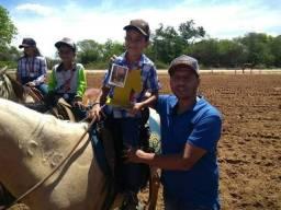 Cavalo sem registro
