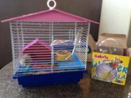 Hamsters com casinha