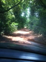 Fazenda 9,5 alqueire, 45km de Goiânia