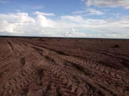 Fazenda de Soja de 2000 Hectares na região de Balsas-Maranhão !!!