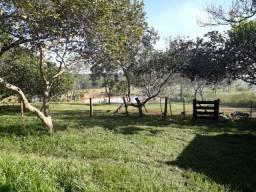 Chácara com 26.8 hectares na Beira da BR 364