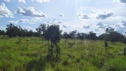 1.000 Alq. p/ Soja e Safrinha. (Sul do Pará)