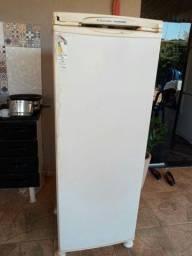 Freezer 450,00