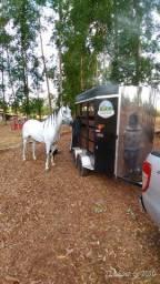 Trailer 2 cavalos