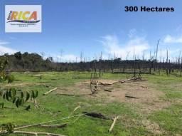 Fazenda à venda, com 300 hectares na área Rural de Porto Velho /RO