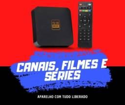 TV in box - Mega Digital TV
