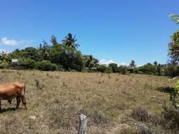 Vendo área na entrada do matapuan R$350 Mil metragem 6.050m3