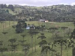 Ampla área rural em São Bento do Sul com 423.646 m²