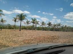 Fazenda 53 Ha em Bom Despacho Milho, Soja e Feijão