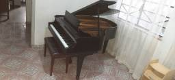 Piano de Cauda Chickering