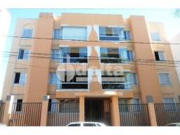 Apartamento para alugar com 3 dormitórios em Centro, Uberlandia cod:473304