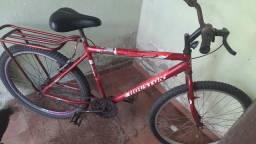 Bike Hoston