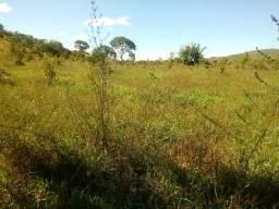Fazenda 83 Alqueires Municipio Cocalzinho