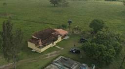 3.82 hectares a 12 km de Castanhal por 300 mil reais zap 988697836