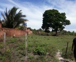 Terrenos / Lotes Documentados à Beira da MA-203 - Próximo Mangue Seco