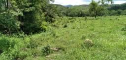 fazenda com 403 hectares na agrovila das palmeiras