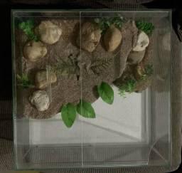 Terrário/Aquário para tartaruga