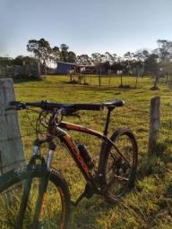 Bike oggi 29