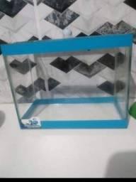 Vendo 2 aquários para peixe betta contendo 1 aquecedor