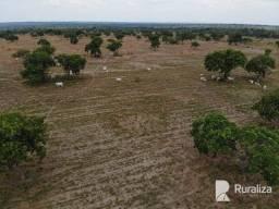 Fazenda em Araguacema -TO com alto potencial