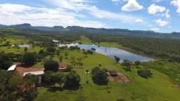 Fazenda dupla aptidão município porto nacional