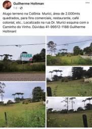 Alugo terreno em São José dos Pinhais