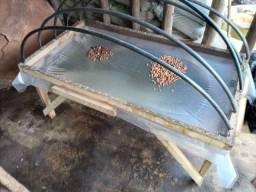 Estufa para germinação de sementes