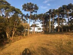 Terreno rural 3,54 hectares em Urubici em até 36X