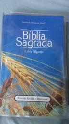 Nao é harpa biblia letra gigante