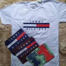 Camisetas adulto masculinas G e GG