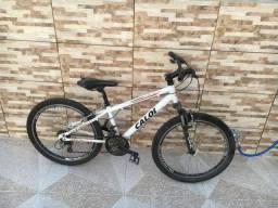 Bicicleta wild aro 24