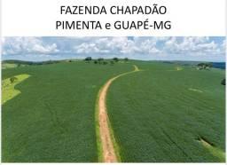Fazenda Chapadão em Minas Gerais