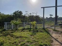 Fazenda Alça Viaria KM 58