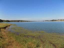 Fazenda com 225 alqueires, agricultura com pivô, rica em água (Nogueira Imóveis Rurais)