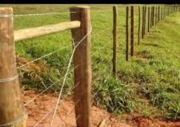Trabalhamo com construção de cercas e curral limpeza de chácara