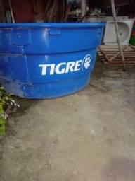 Caixa d'água tigre