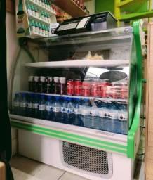 Freezer Expositor Horizontal Estufa Polar Gelopar 110VL