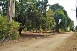 Terreno à venda em Novo, Carpina cod:TE01JR
