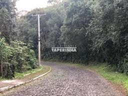 Terreno à venda em Zona rural, Itaara cod:12512