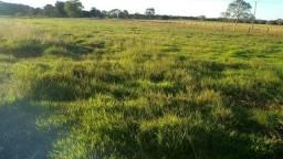 Fazenda 400 Alqueires na bacia do Araguaia