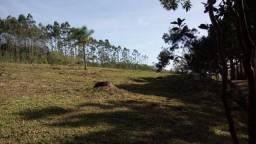 Excelente área no Morro Borrússia em Osório